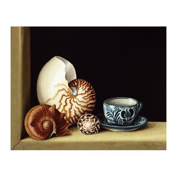 Quadro -Still life with Nautilus, 1998 (w.c on paper)-