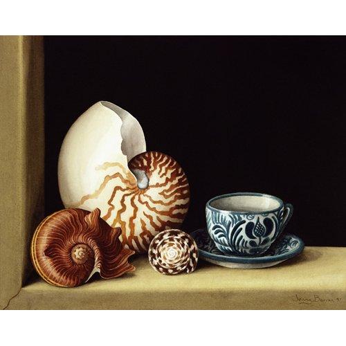 Quadro -Still life with Nautilus, 1998 (w.c on paper)-