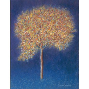 Quadros abstratos - Quadro -Tree in Blossom- - Davidson, Peter