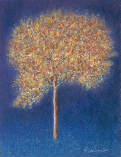 quadros-modernos - Quadro -Tree in Blossom- - Davidson, Peter
