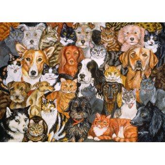 quadros de animais - Quadro -Rain- - Ditz