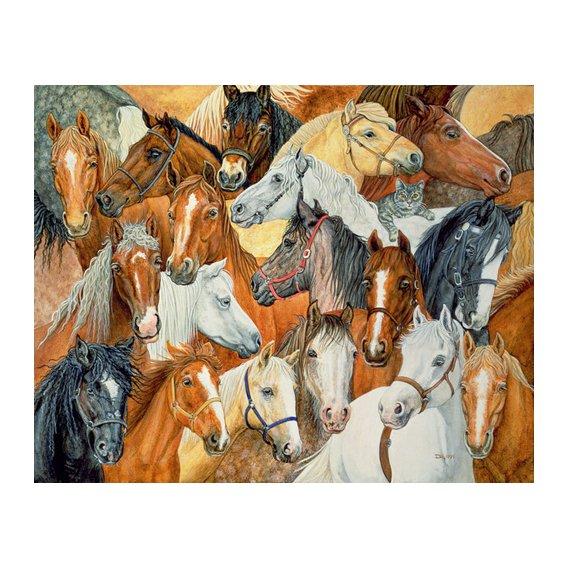 Quadro -Dee's Horse-Blanket-