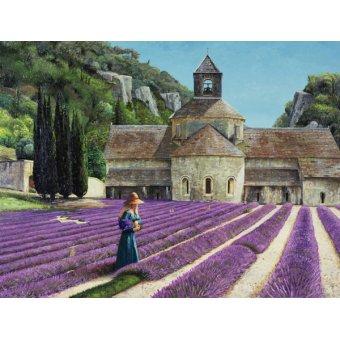 - Quadro - Lavender Picker, Abbaye Senanque, Provence - - Neal, Trevor