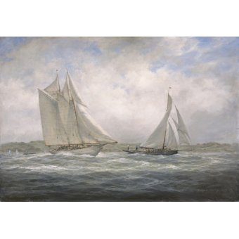 quadros de paisagens marinhas - Quadro - Two Classics. 'Aello Beta' and 'Marigold' off the Isle of Wight, 2005 - - Willis, RIchard