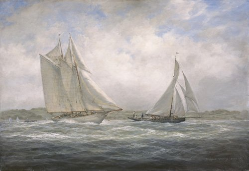 quadros-de-paisagens-marinhas - Quadro - Two Classics. 'Aello Beta' and 'Marigold' off the Isle of Wight, 2005 - - Willis, RIchard