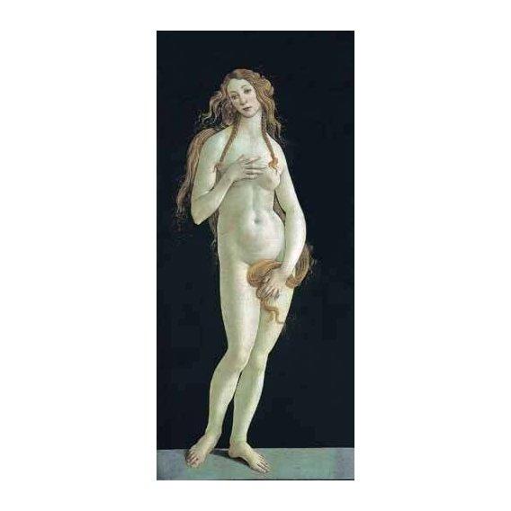 cuadros de retrato - Cuadro -Venus-