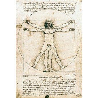 imagens de mapas, gravuras e aquarelas - Quadro -Hombre de Vitruvio- ó -Estudio anatómico- - Vinci, Leonardo da