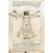 Quadro -Hombre de Vitruvio- ó -Estudio anatómico-