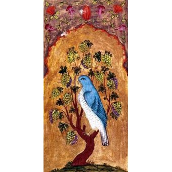 cuadros de fauna - Cuadro -Halcón azul sobre una rama- - _Anónimo Persa