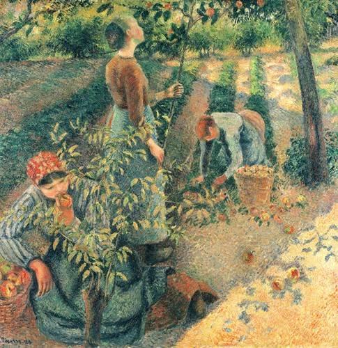 cuadros de retrato - Cuadro -Las recolectoras de manzanas- - Pissarro, Camille