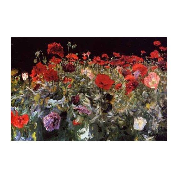 cuadros de flores - Cuadro -Amapolas-
