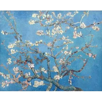 quadros de flores - Quadro -Amendoeira em Flor- - Van Gogh, Vincent