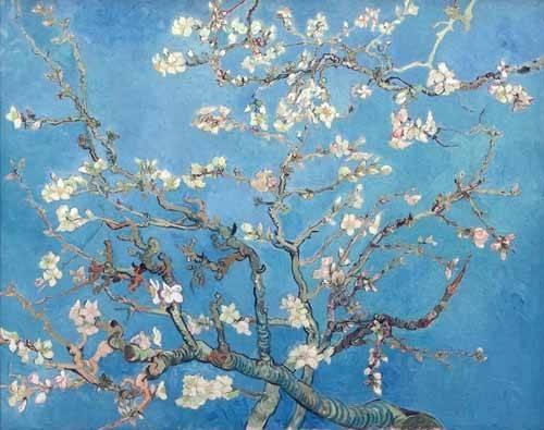 quadros-de-flores - Quadro -El almendro- - Van Gogh, Vincent