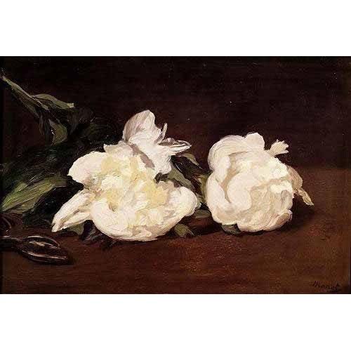 Cuadro -Rama de peonías blancas y podadera-