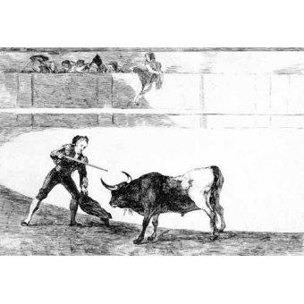 imagens de mapas, gravuras e aquarelas - Quadro -Tauromaquia num.30: Pedro Romero matando a toro parado- - Goya y Lucientes, Francisco de