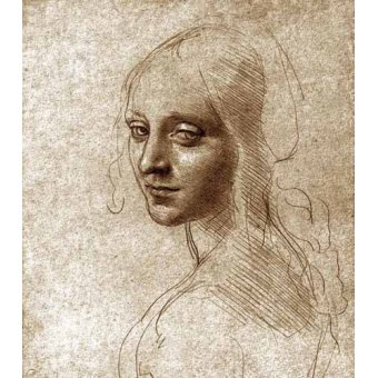 imagens de mapas, gravuras e aquarelas - Quadro -Angel face of the Virgin of the Rocks- - Vinci, Leonardo da