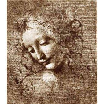 imagens de mapas, gravuras e aquarelas - Quadro -Cabeza de dama- - Vinci, Leonardo da