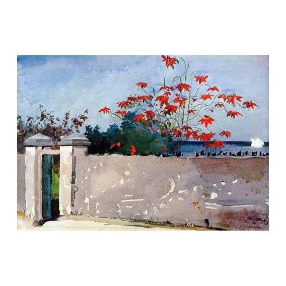 imagens de mapas, gravuras e aquarelas - Quadro -Un Muro, Nassau-
