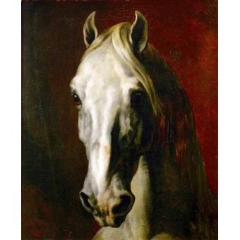 quadros de animais - Quadro -Cabeza de caballo blanco- - Gericault, Theodore