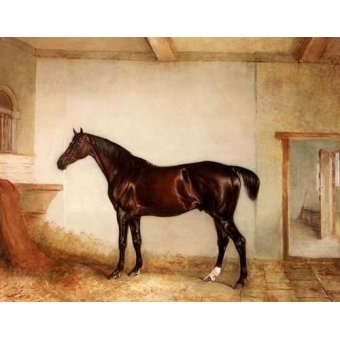 quadros de animais - Quadro -A Bay Hunter in a Loose Box- - Ferneley I, John