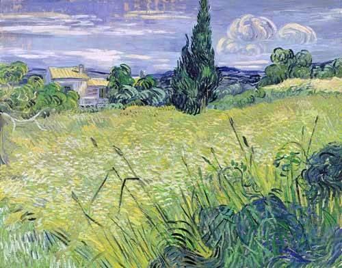 quadros-de-paisagens - Quadro -Paisaje con maíz verde- - Van Gogh, Vincent