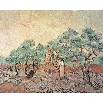 quadros de paisagens - Quadro -El Olivar- - Van Gogh, Vincent