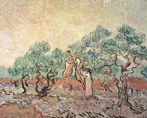 quadros-de-paisagens - Quadro -El Olivar- - Van Gogh, Vincent